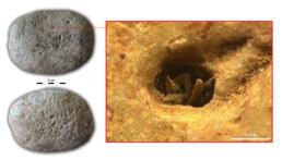 Pietra da macina neolitica con resti di fibre vegetali proveniente dalla grotta di Haua Fteah, Libia